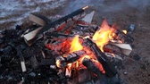 Outdoor winter campfire closeup video, burning wood