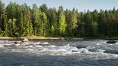 Natural landscape of Kymi in Finland, fast river water motion along coastal forest
