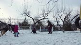 śnieżka : The happy family of fours playing with snow on the backyard. They laugh and throw snow up in the air. Wideo