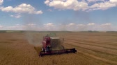 não urbano : Aerial: Harvesting the wheat. Slow motion