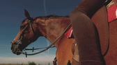 equestrian sport : Horse detail and a woman riding Stock Footage