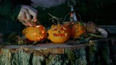 creepy : Girl placing a candle in a Halloween pumpkins over a tree trunk Stock Footage