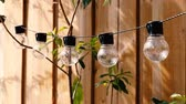 trendy globe string lights outdoor hanging from trees in private garden moving in the wind with wooden fence and greenery in the background
