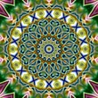 Unique rendering, Abstract exotic animation, Fantastic design, Colorful digital art, geometric kaleidoscope Stock Footage
