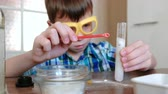 intently : Experiments on chemistry at home. Chemical reaction with the release of gas in the test tube in the boy,s hands.