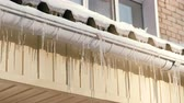 капелька : Icicles hang from a drainpipe of a house.