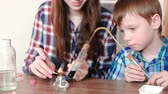 intently : Experiments on chemistry at home. Boy and his mom heat the test tube with blue liquid on burning alcohol lamp.