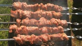 выпивка : Appetizing juicy pork barbecue is roasted on skewers on top of charcoal grill. Close-up meat pieces. Стоковые видеозаписи