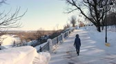wintertime : Young woman in blue down jacket with fur hood walking in winter park. Back view. Stock Footage
