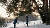 śnieżka : Man and woman playing snowballs in the winter forest. Sunset in the winter forest. Wideo