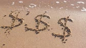 промывали : Dollar signs written in the sea sand. Waves washed away the inscription.