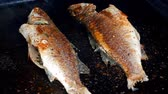 seabass : UHD shot of the sea bass on the grill Stock Footage