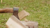 kesmek : Chopping firewood by the axe in slow motion Stok Video