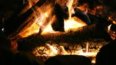 уголь : UHD closeup shot of the burning fireplace