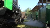 A narrow gauge railway steam train