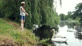 mere : Young girl in panama feeds swans on the lake in the summer park.