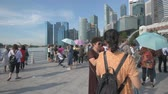 fullerton : SINGAPORE - April 19, 2017: Many tourists at the Merlion Park in Singapore at early morning. Left to right pan. Stock Footage