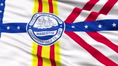 tampa : Tampa City Flag Close Up Realistic Animation Seamless Loop - 10 Seconds Long Vídeos