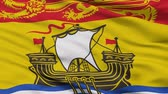 patriótico : New Brunswick closeup flag, city of Canada, realistic animation seamless loop - 10 seconds long Stock Footage