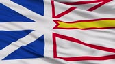 newfoundland : Newfoundland and Labrador closeup flag, city of Canada, realistic animation seamless loop - 10 seconds long Stock Footage