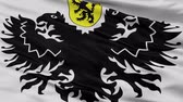 rendering : Lo Reninge closeup flag, city of Belgium, realistic animation seamless loop - 10 seconds long
