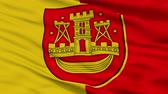 litwa : Klaipeda closeup flag, city of Lithuania, realistic animation seamless loop - 10 seconds long Wideo