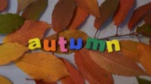 tipo de letra : Word autumn of colorful letters on yellow leaves. Stock Footage