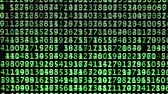 даты : green numeric codes on a computer screen with black background