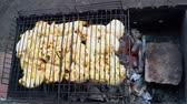 char grilled : Kebab roasted in the grill on the grill Stock Footage
