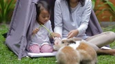 tur : mother and daughter feeding rabbit