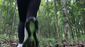 refrescante : woman running in the woods