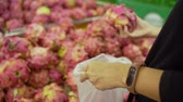 koupit : close up of the hand of a buyer is choosing the dragon fruit to buy