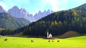santa magdalena : Beautiful autumn forest with baroque church of St. Johann in Val di Funes, Dolomites, Italy