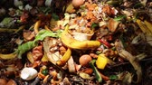 decomposing : Recycles kitchen and yard waste. Home composting is the most environmentally-friendly way of dealing with kitchen and garden waste, plus it produces compost that can be used as an excellent soil improver