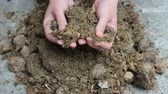 nourish : Composting cow manure. Manure as fertilizer. The hands of a farmer