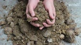 nourish : Animal manure compost. The hands of a man. Manure is a valuable fertilizer for any farming operation