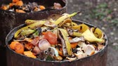 fertiliser : Home compost barrel. Food scraps compost heap