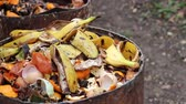decomposing : Food scraps compost heap. Heap of wet organic matter known as green waste (leaves, food waste) and waiting for the materials to break down into humus