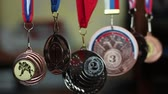 artes marciais : Medals Collection Of Judo. Collection of sports awards Vídeos