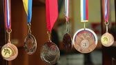 conquest : Medals Collection Of Judo. Collection of sports awards Stock Footage