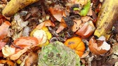 spoilage : Kitchen Scraps and Red Worms. Vermicomposting is the practice of feeding scraps to worms who produce fertilized soil as a byproduct