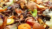 spoilage : Vermicomposting. Worm composting is an easy, efficient way to recycle food wastes into a fine, high-quality compost (worm castings) for your houseplants or garden