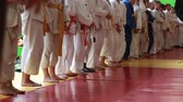 classificação : Judo Competition. The Awards Ceremony. Children Martial arts. School of judo