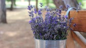 provence : Lavender rustic decor. Decoration of lavender flowers in the garden. Lavender-themed event