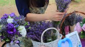 wazon : Flower-Girl Sells Lavender Bunches In A Outdoor French Market Wideo