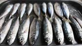 frigideira : Fresh Sea Fish On A Baking Sheet Stock Footage