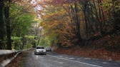 enrolamento : Hilly Forest Road in the autumn. Forest road in autumn with many trees in colorful foliage. Fall of the leaf