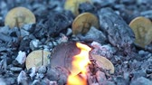 course pied : Bitcoin is burning. Proof of burn. Burnt coins. Miners show proof that they burned some coins