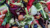 decomposing : Vegetable kitchen scraps such as peels, skins, stalks. Organic waste for vermicomposting close up Stock Footage