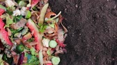 leftover : Kitchen Scraps. Organic Waste Composting. Compostable food scraps are one of the best and readily available sources of organic materials for home composting